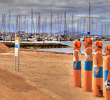 Geelong's Baywatch by ashara