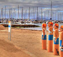 Geelong's Baywatch by ashara
