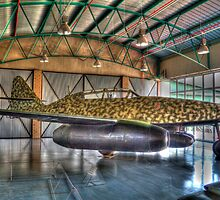 Warbird - the father of the operational jet fighter by Gideon van Zyl