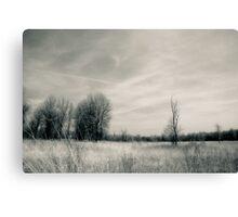 Open Prairie Kitty Todd Nature Preserve Canvas Print
