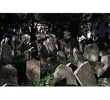 Old Jewish Cemetery Photographic Print