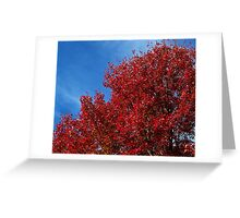 From Green to Blazing Red Greeting Card