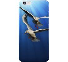 Two gulls iPhone Case/Skin