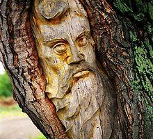 Spirit of the Forest by Juergen Weiss