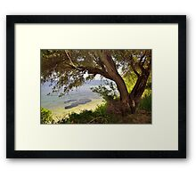 an olive tree at the shore Framed Print