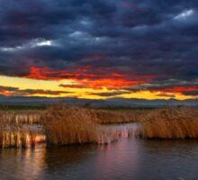 Sunset at the marshlands of Aliakmonas river Sticker