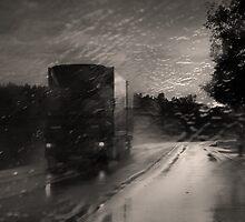 In The Rain by Danuta Antas
