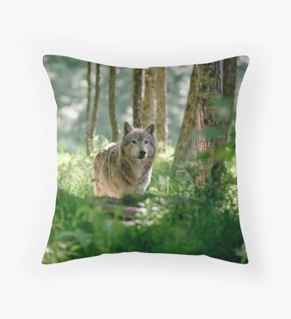 Timberwolf in Forest Throw Pillow