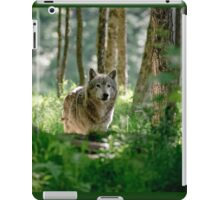 Timberwolf in Forest iPad Case/Skin