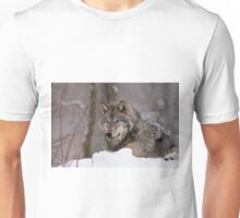Timberwolf in Winter Unisex T-Shirt