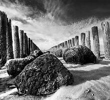 The wrath of the tide by George Parapadakis (monocotylidono)