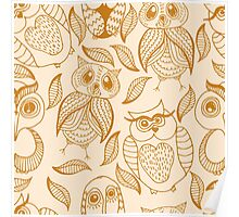 Four different brown owls Poster