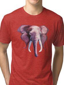 Blended Strength- Elephant Painting Tri-blend T-Shirt