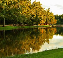 Fall Reflections by Susan Blevins