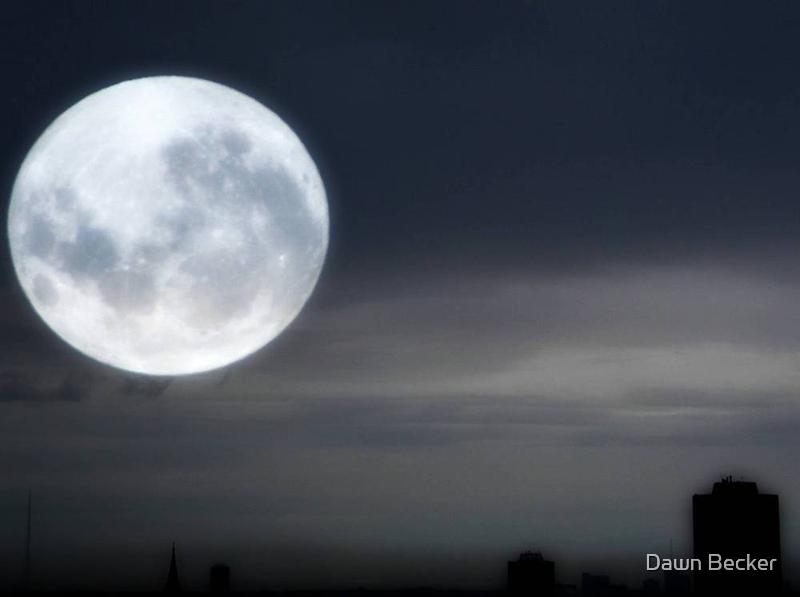 Silvery Moon ©  by Dawn M. Becker