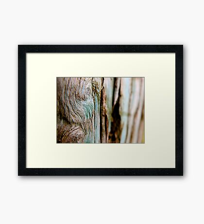 Theres Volumes in the Forest No One Reads Out Loud Framed Print