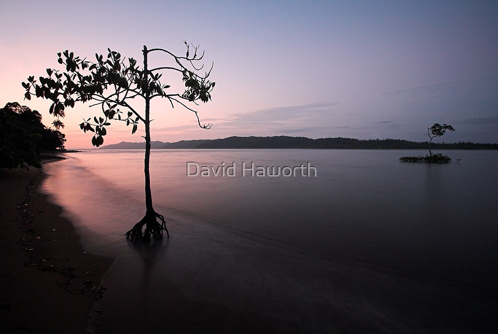 The Nature of Sunrise by David Haworth
