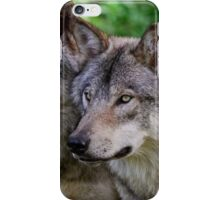 Forest Guardians  iPhone Case/Skin