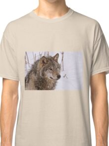 Timber Wolf Portrait  Classic T-Shirt