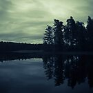 Lake by Night by Nicklas Gustafsson
