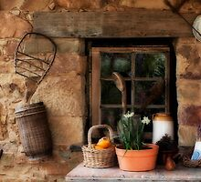 Country Comfort by Cathy  Walker