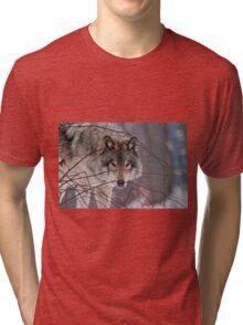 Got you! Tri-blend T-Shirt