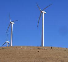 Wind Farm by mss3