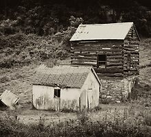 Cabin & Toolshed by Hugh Smith