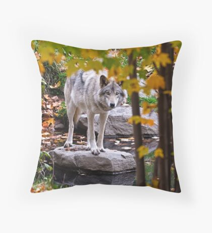 Timber Wolf by Pond Throw Pillow