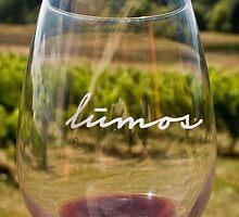 Lumos Winery by Misti Gottsch