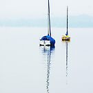 Peace on the Ammersee by ColeCollection