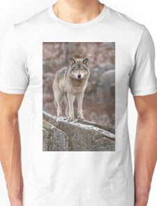 Timber Wolf on Rocks T-Shirt