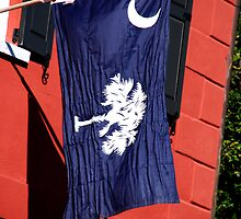 South Carolina State Flag by Susanne Van Hulst