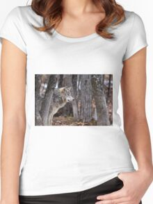 Timber Wolf in trees Women's Fitted Scoop T-Shirt