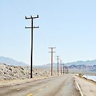 Buzz- Amboy Road Amboy, California  by LeahS