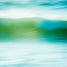 Wave in Motion by Lynnette Peizer