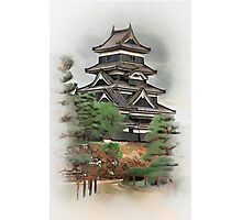Welcome to Japan....... Photographic Print