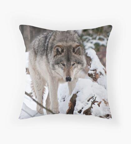 Patrolling  Throw Pillow