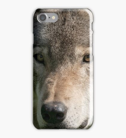 Timberwolf - Acrylic painting treatment in PS3 iPhone Case/Skin