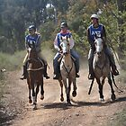 Endurance Ride by suziimages