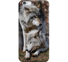Alpha Pair iPhone Case/Skin