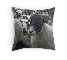 Ewe Wanted Something? Throw Pillow
