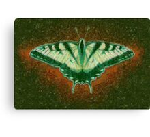 BUTTERFLY TREASURE Canvas Print
