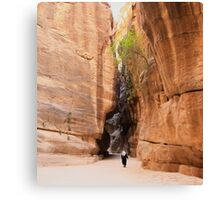Siq to Petra, Jordan Canvas Print