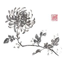 Golden dragon Chrysanthemum sumi-e painting by Maryna Sokolyan
