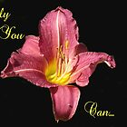 Pink Lilly set with words by Dawnsuzanne