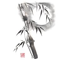 Moon blade bamboo sumi-e painting  Photographic Print