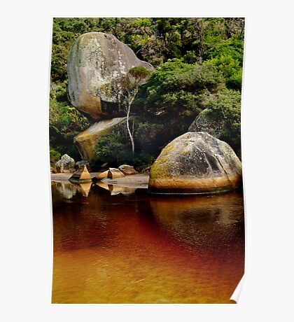 Tea Tree Stained Waters of Tidal River Poster