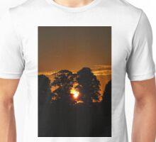 Tangerine Split Unisex T-Shirt