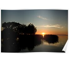 Sunset through the reeds Poster